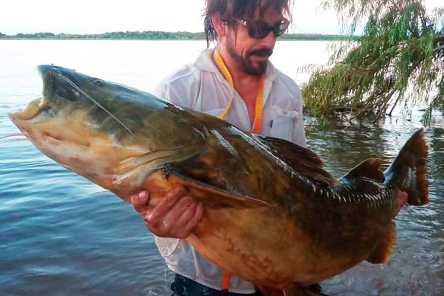 pesca-increible