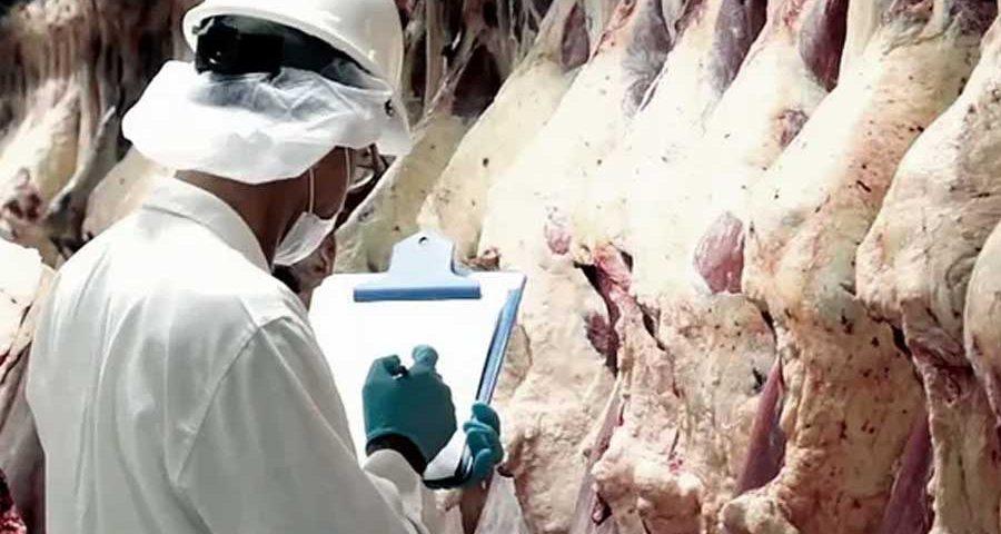 Carne-exportacion