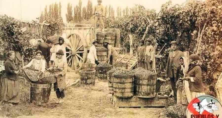 Vinos-entrerrianos
